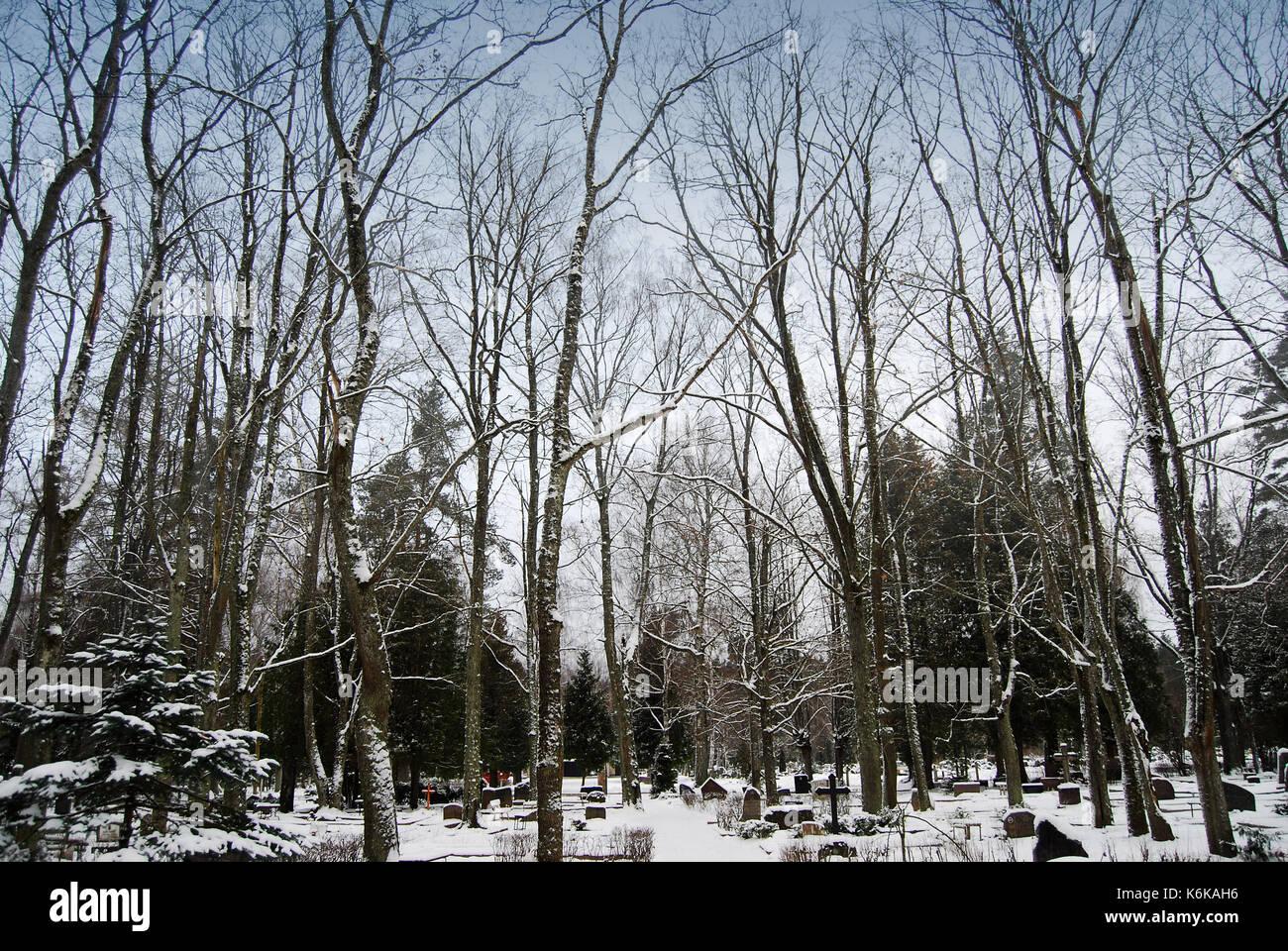 Cemetery in winter - Stock Image