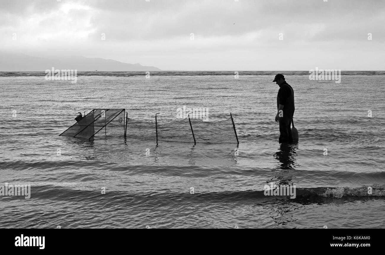 Wellington, New Zealand - Nover 18, 2016: Waiting for the Whitebait to arrive at the nets, Fishing off Waikanae Beach New Zealand - Stock Image