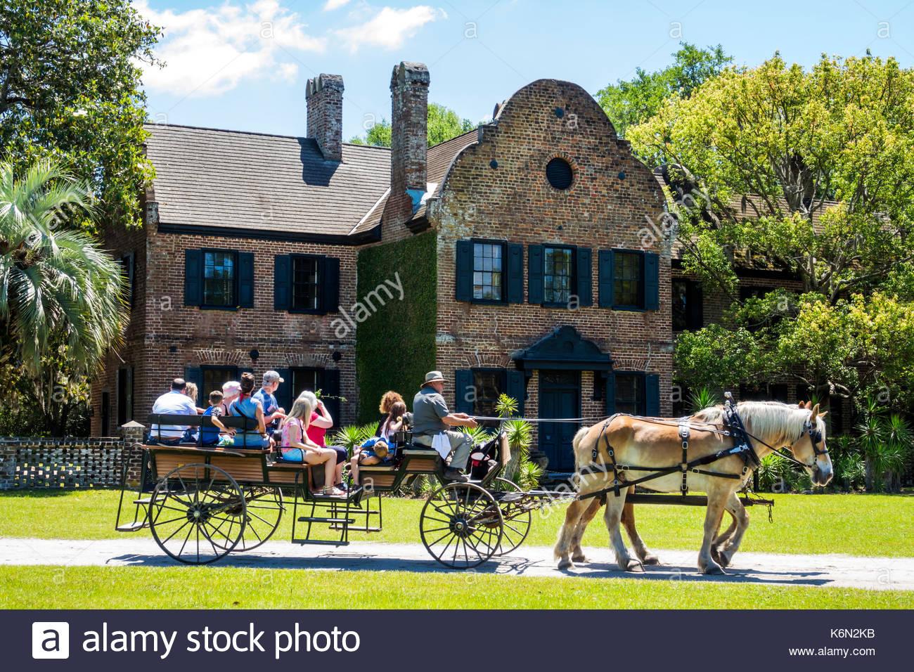 Charleston South Carolina SC Middleton Place National Historic Landmark Ashley River rice plantation antebellum 1730 garden horse-drawn carriage guide - Stock Image