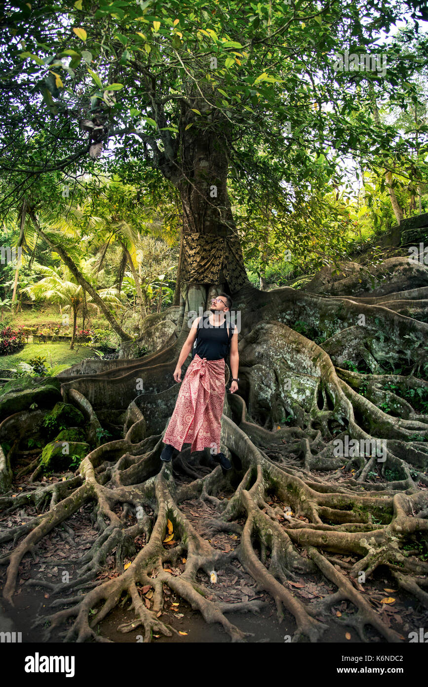 Sarung Stock Photos Images Alamy Cap Gajah Huge Roots On The Ground And A Man With At Goa Temple Bali Indonesia