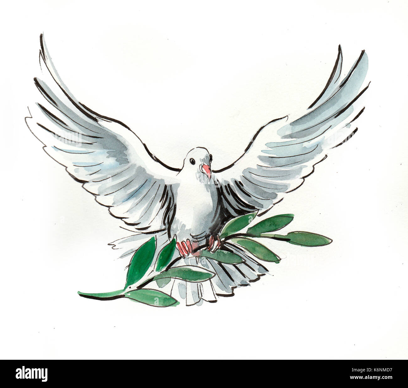 White Dove With An Olive Branch Symbol Of Peace Stock Photo