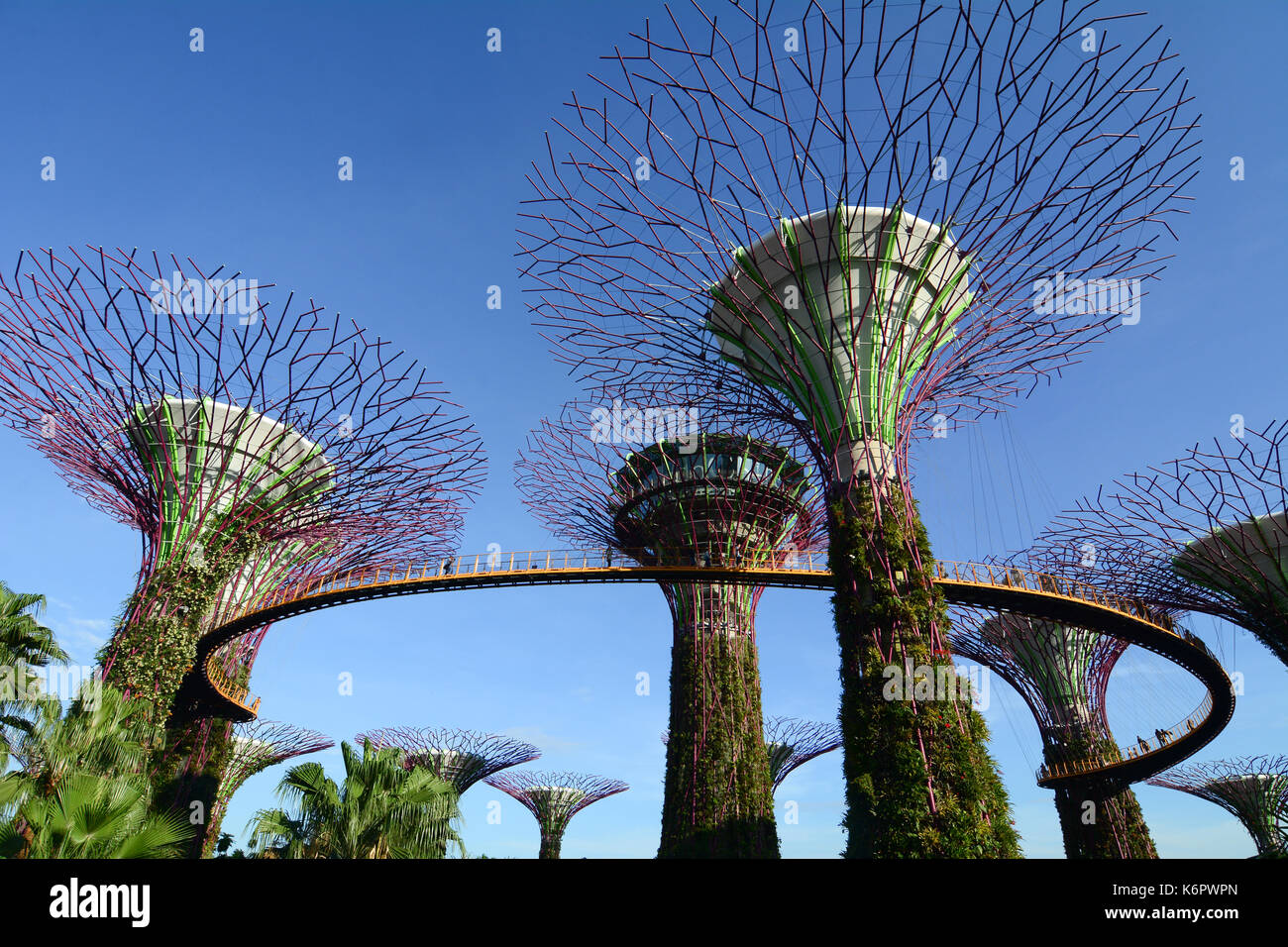 Singapore - Mar 12, 2016. Supertree Grove at the Gardens by the Bay in Singapore. The supertrees are much more than an ostentatious display of contemp - Stock Image