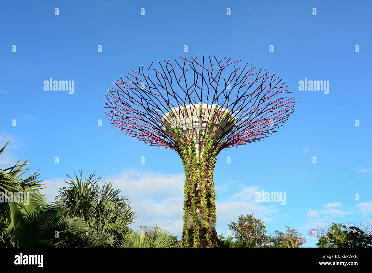 Singapore - Mar 12, 2016. A supertree at the Gardens by the Bay in Singapore. The supertrees are much more than an ostentatious display of contemporar - Stock Image