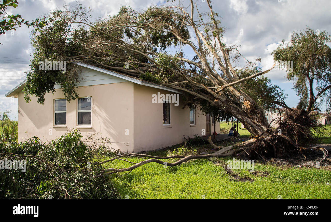 Belle Glade Stock Photos & Belle Glade Stock Images - Page 2 - Alamy