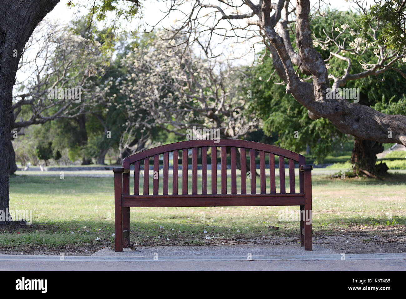 Phenomenal Empty Wooden Chair Or Old Wood Bench In The Garden For Cjindustries Chair Design For Home Cjindustriesco