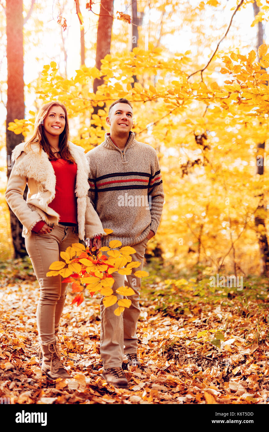 Beautiful smiling couple walking in sunny forest in autumn colors. Stock Photo