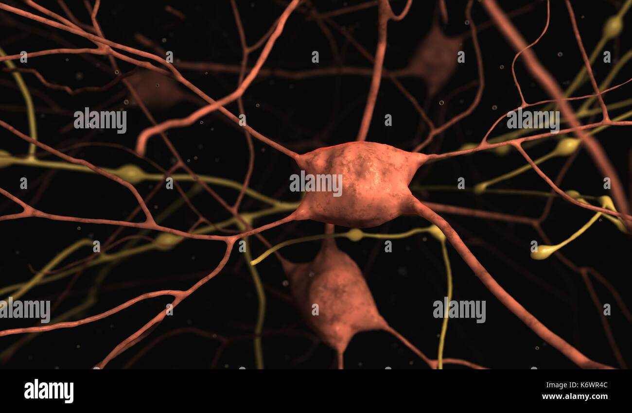 Highly detailed 3D concept image of Glial Neuron / Neurons cells against black background with floating debris and depth of field blurring. - Stock Image