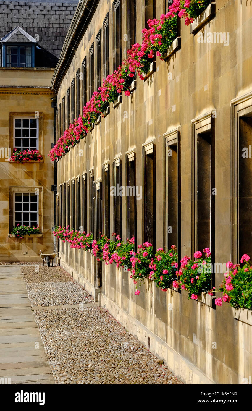 peterhouse college, cambridge university, england - Stock Image