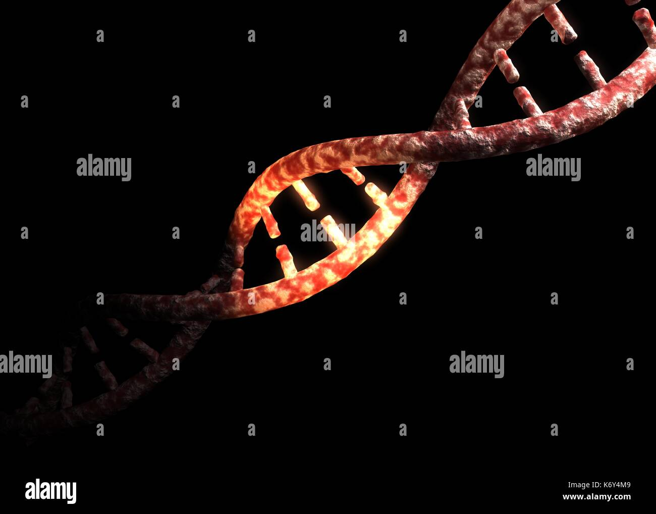 Glowing DNA Helix (Deoxyribonucleic Acid) concept gene/genome isolated on black background. - Stock Image