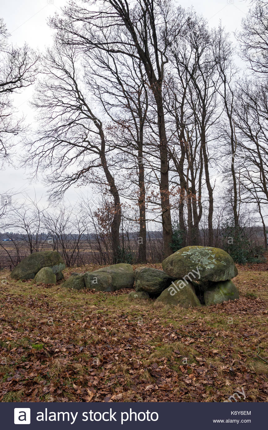 Dolmen D32, an ancient megalithic tomb in the Netherlands on a cloudy day in winter. - Stock Image