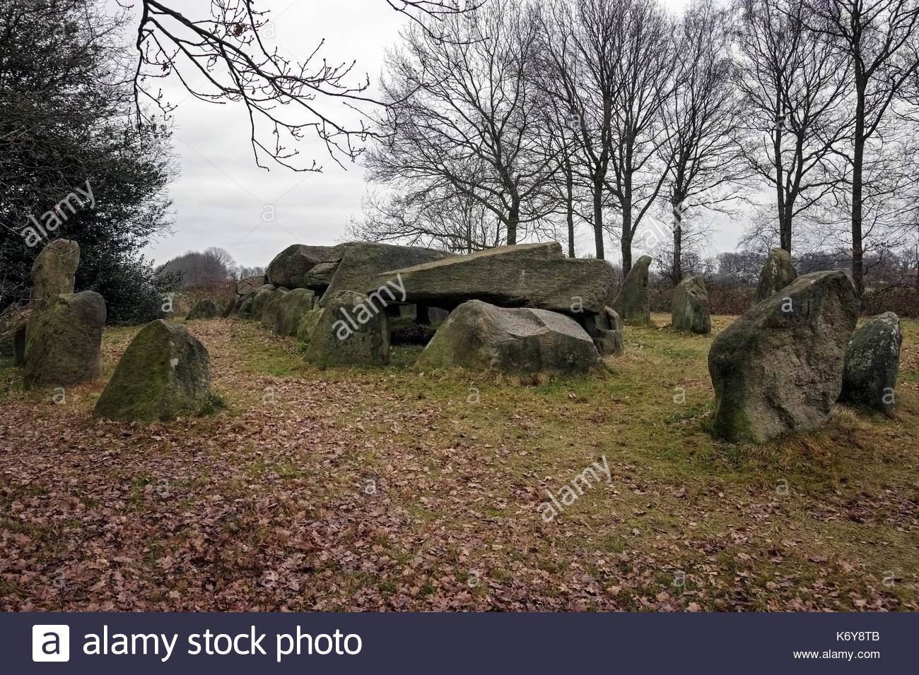 Dolmen D50, an ancient megalithic tomb in the Netherlands on a cloudy day in winter. - Stock Image
