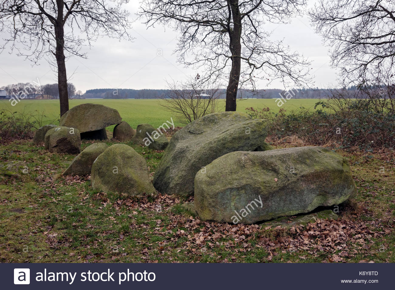 Dolmen D51, an ancient megalithic tomb in the Netherlands on a cloudy day in winter. - Stock Image