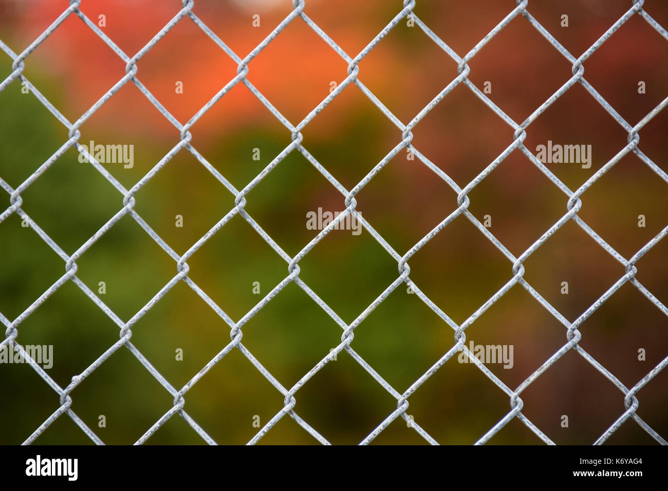 Soft focus autumn foliage colors behind a chain link fence indicating confinement or exclusion from the other side in Speculator, New York NY - Stock Image