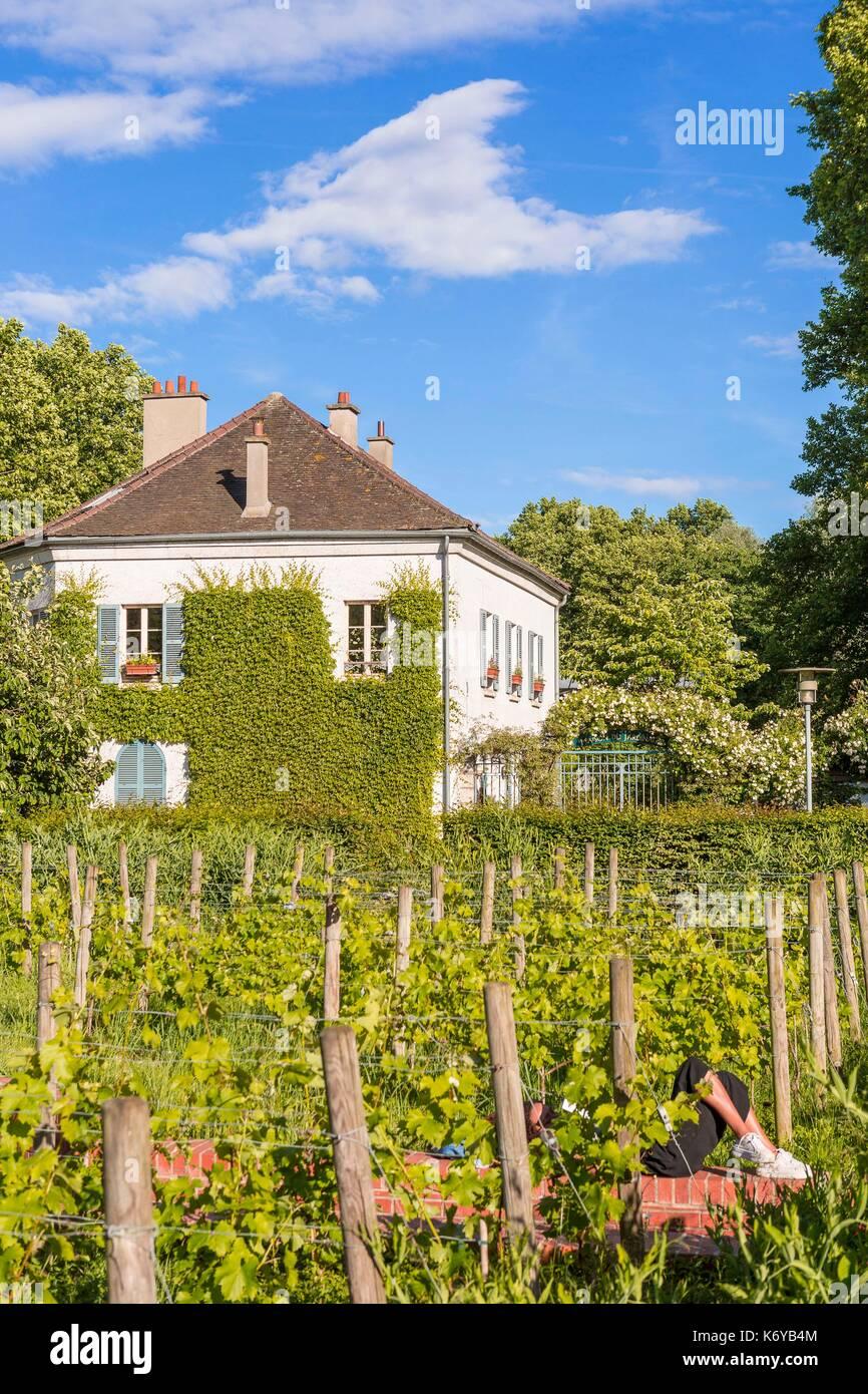 France, Paris, the Parc de Bercy, the Maison du Jardinage and the vineyards - Stock Image