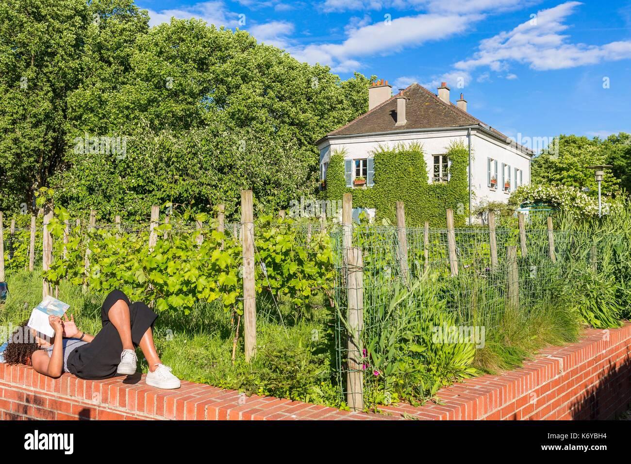 France, Paris, the Parc de Bercy, vines - Stock Image