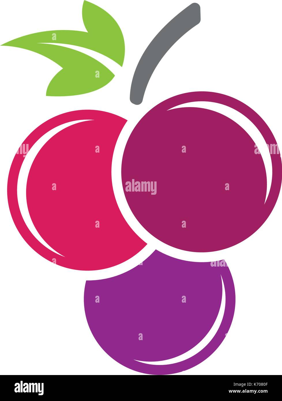 Grapes logo template vector icon illustration design - Stock Vector
