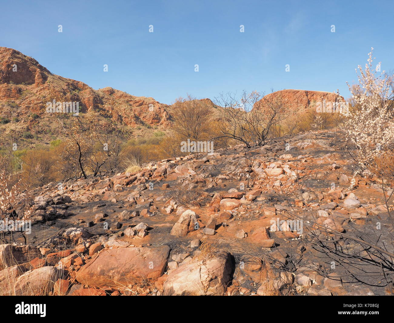 The track along the ridge of Trephina Gorge to Turners lookout, east MacDonnell ranges near Alice Springs, Northern Territory, Australia 2017 - Stock Image
