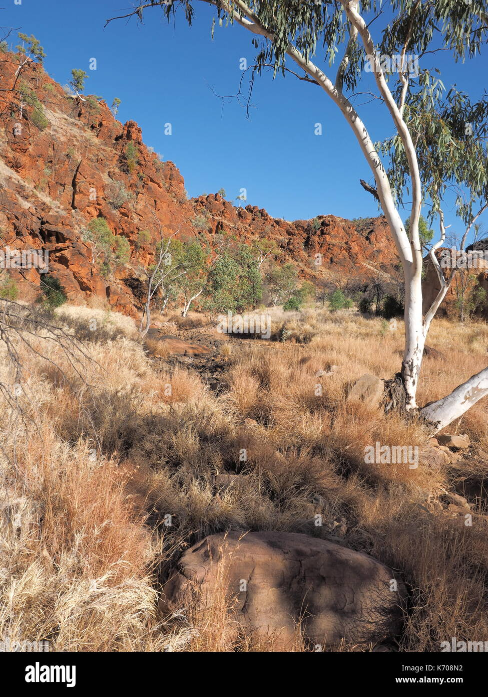 Remote N'Dhala Gorge near Ross River Station, east MacDonnell ranges , Alice Springs, Northern Territory, Australia 2017 - Stock Image