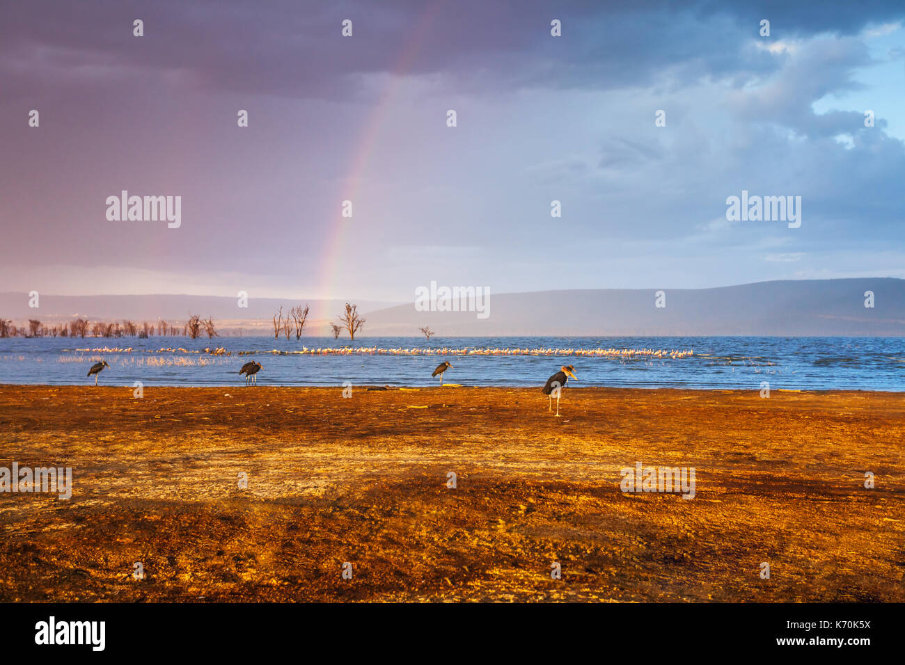 Double rainbow on the cloudy sky over Nakuru lake in Kenya, Africa - Stock Image