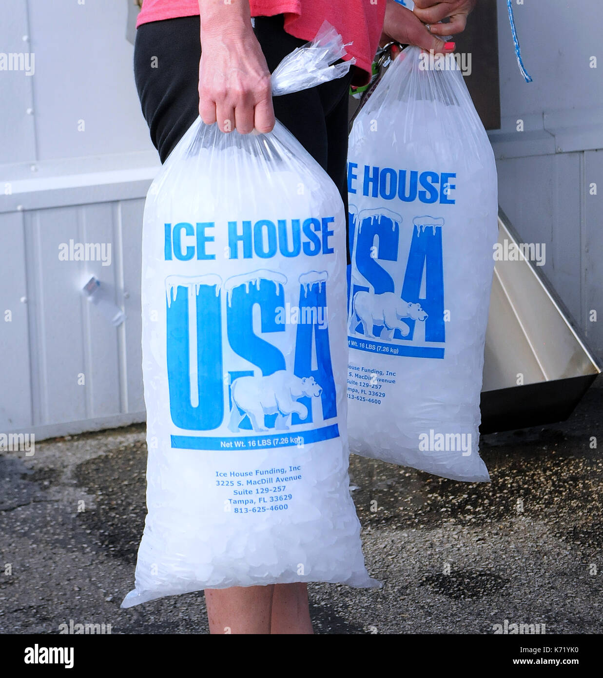 Elfers, United States. 13th Sep, 2017. September 13, 2017- Elfers, Florida, United States - Bags of ice purchased Stock Photo