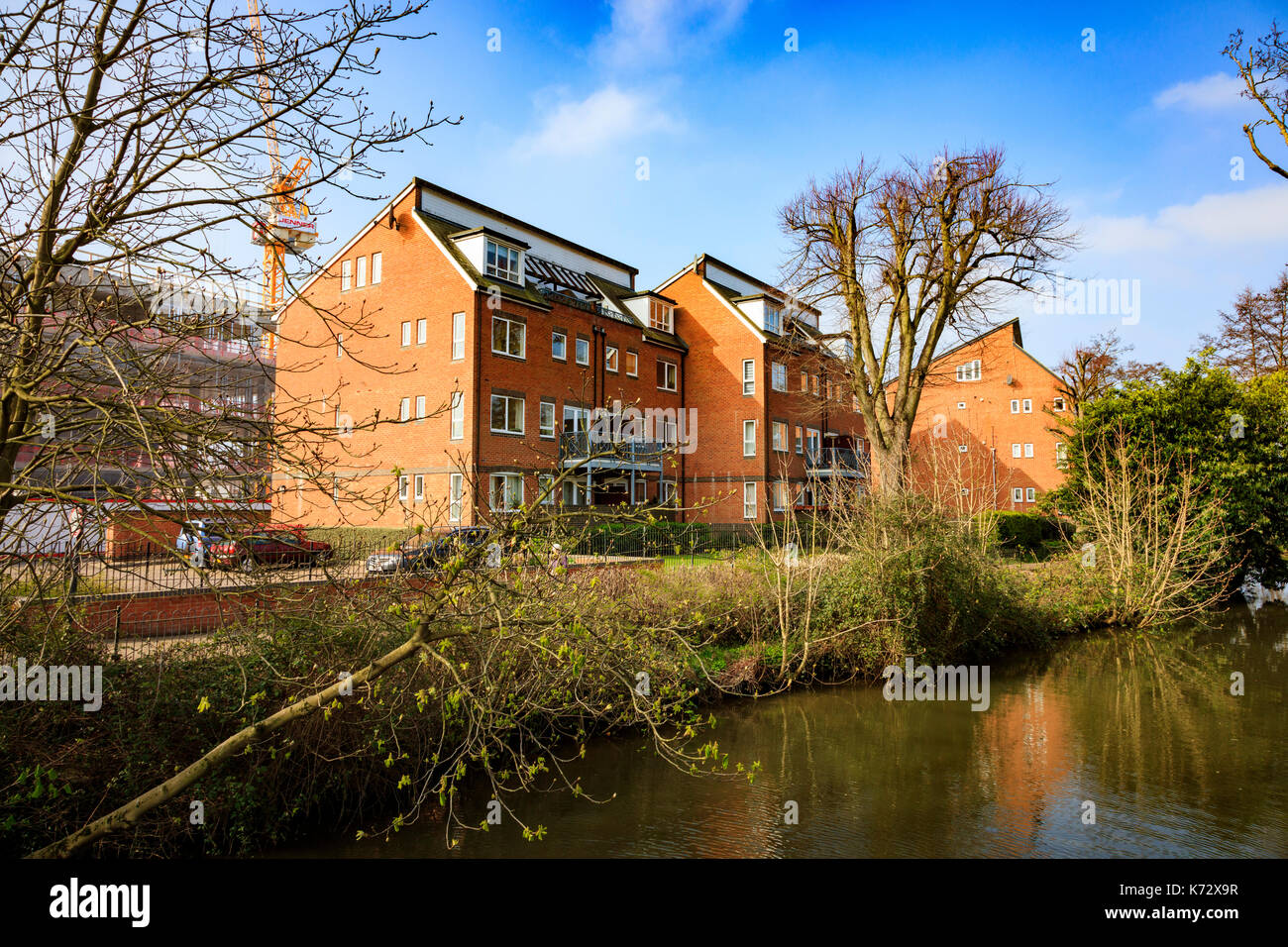 Attractive riverside development along the River Medway in Tonbridge, Kent, UK - Stock Image