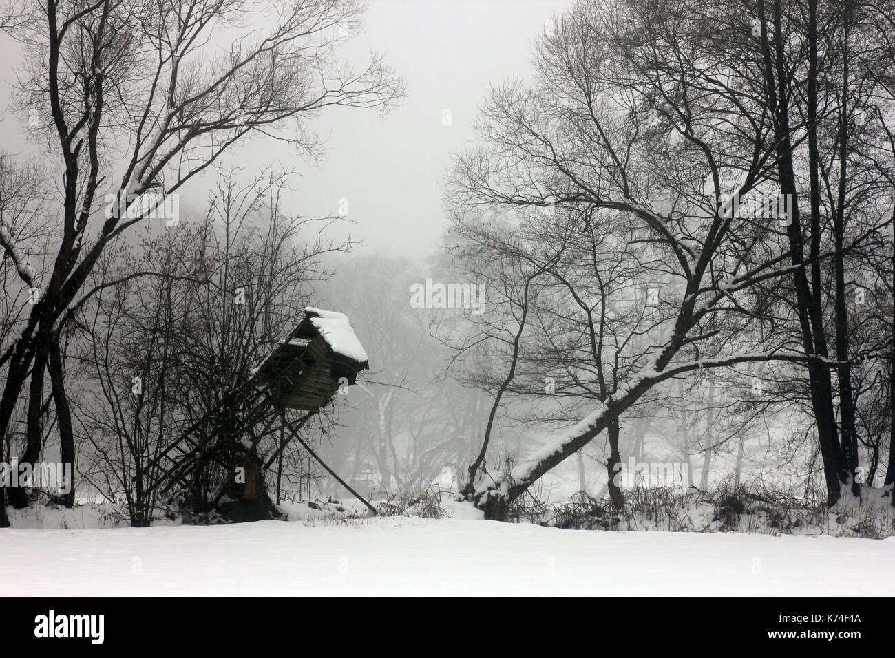 Jagd, hunting, - Stock Image