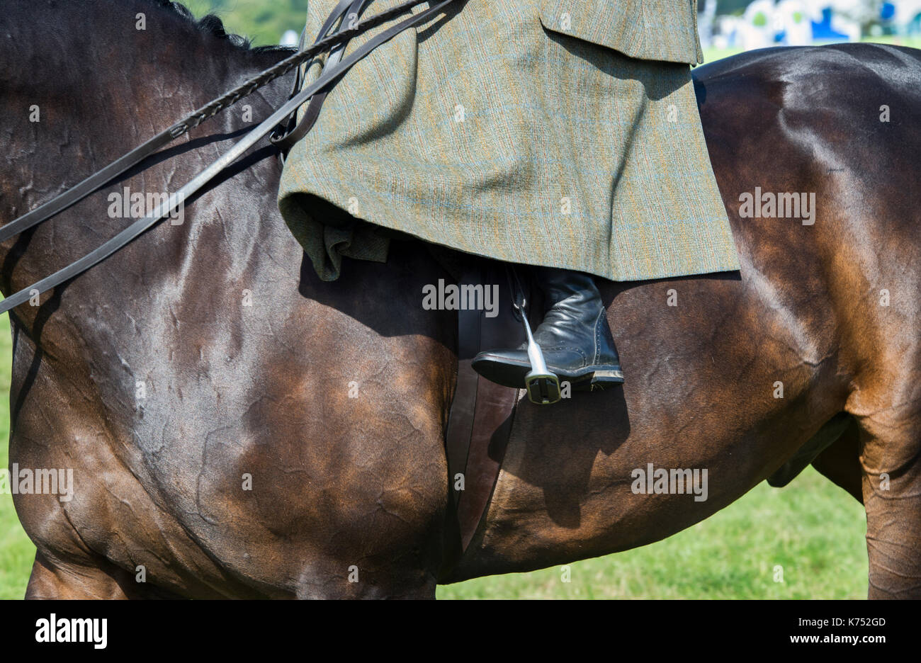 Riding boot stirup abstract. Woman riding sidesaddle on her horse at at Moreton in Marsh country show, Cotswolds, Gloucestershire, UK - Stock Image