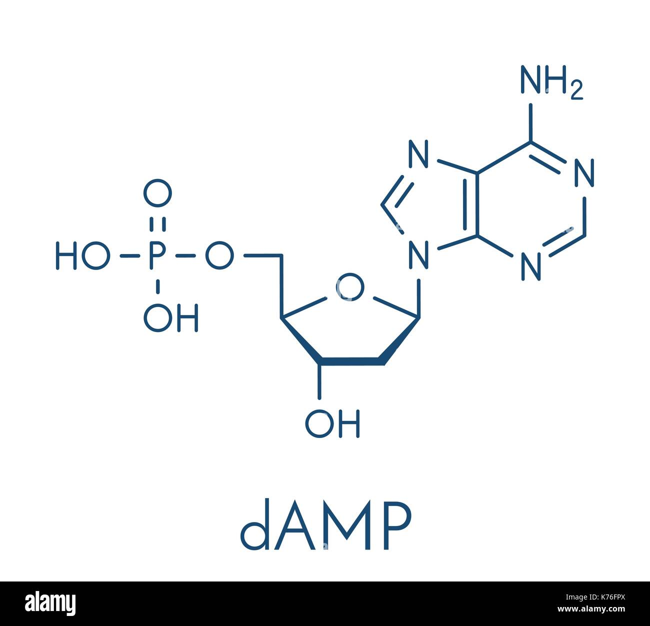 Deoxyadenosine monophosphate (dAMP) nucleotide molecule. DNA building block. Skeletal formula. - Stock Vector