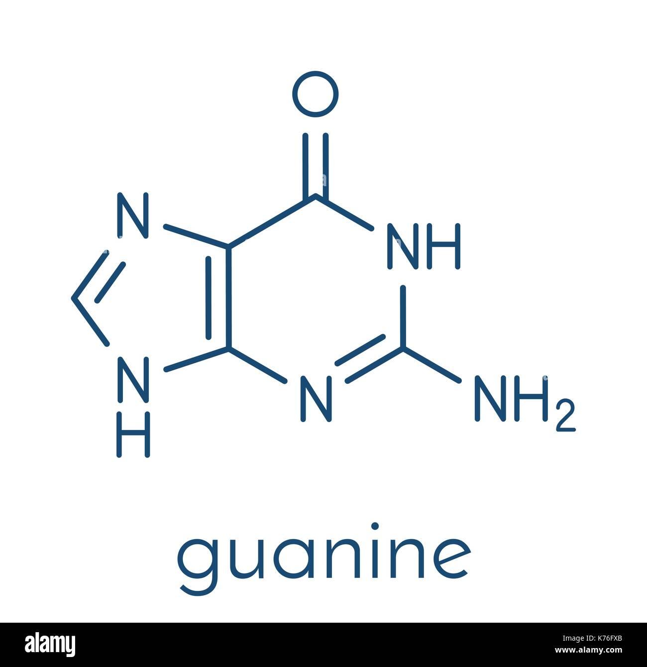 Guanine (G) purine nucleobase molecule. Base present in DNA and RNA. Skeletal formula. - Stock Image