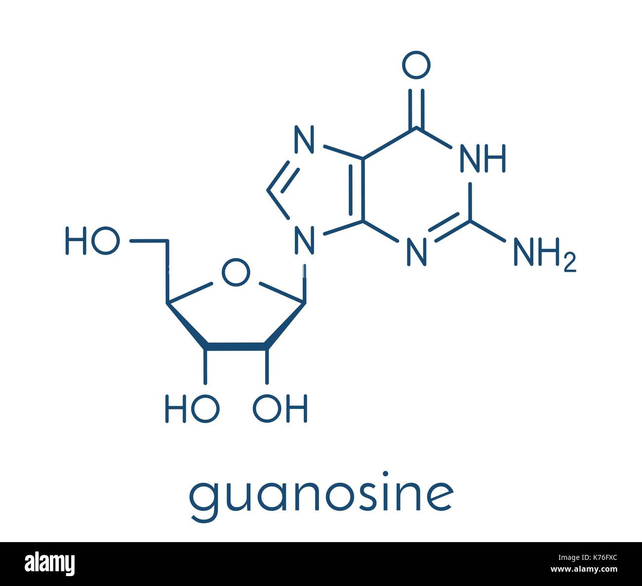 Guanosine purine nucleoside molecule. Important component of GTP, GDP, cGMP, GMP and RNA. Skeletal formula. - Stock Image