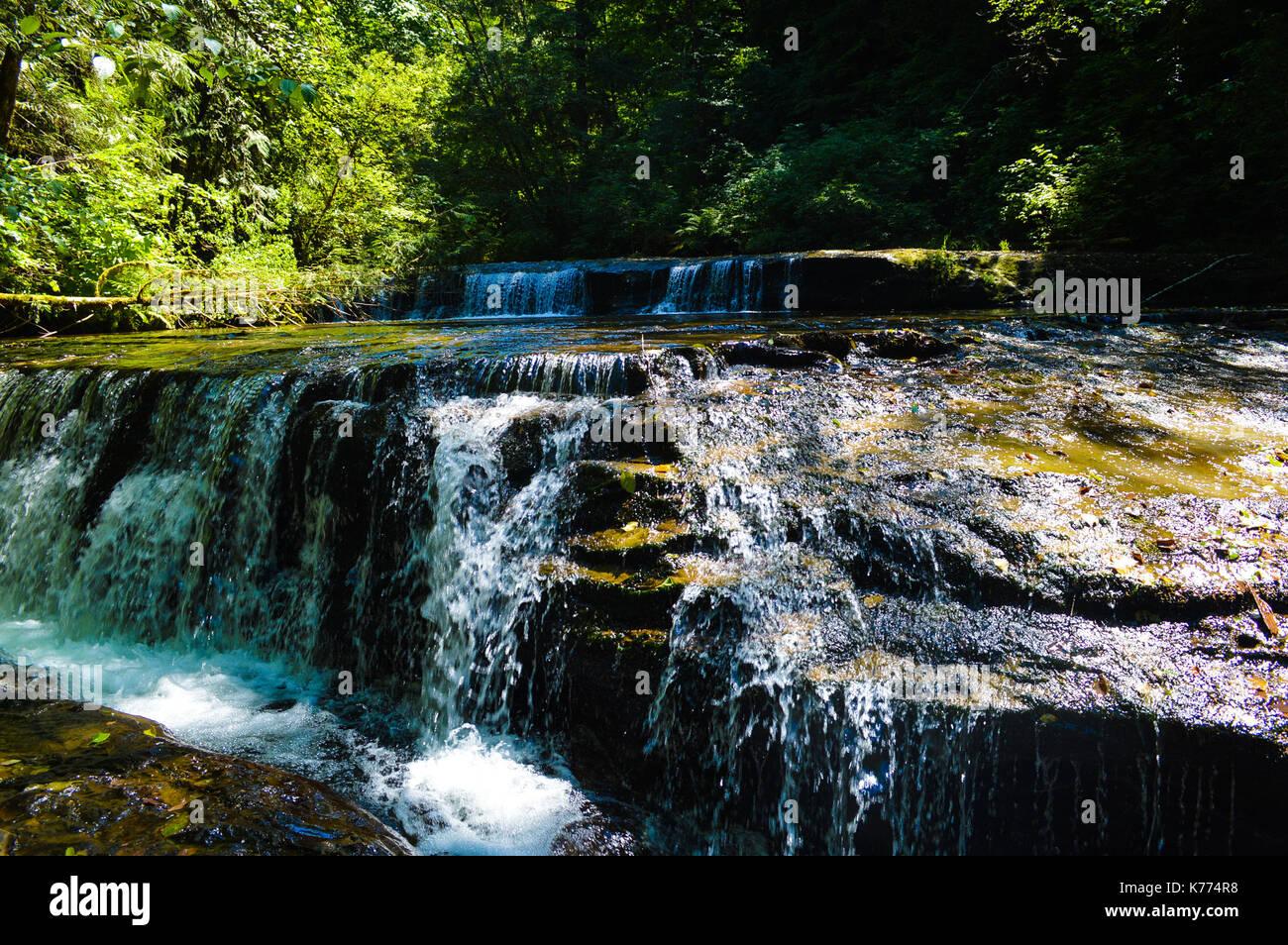 Sweet Creek Falls, OR - Stock Image