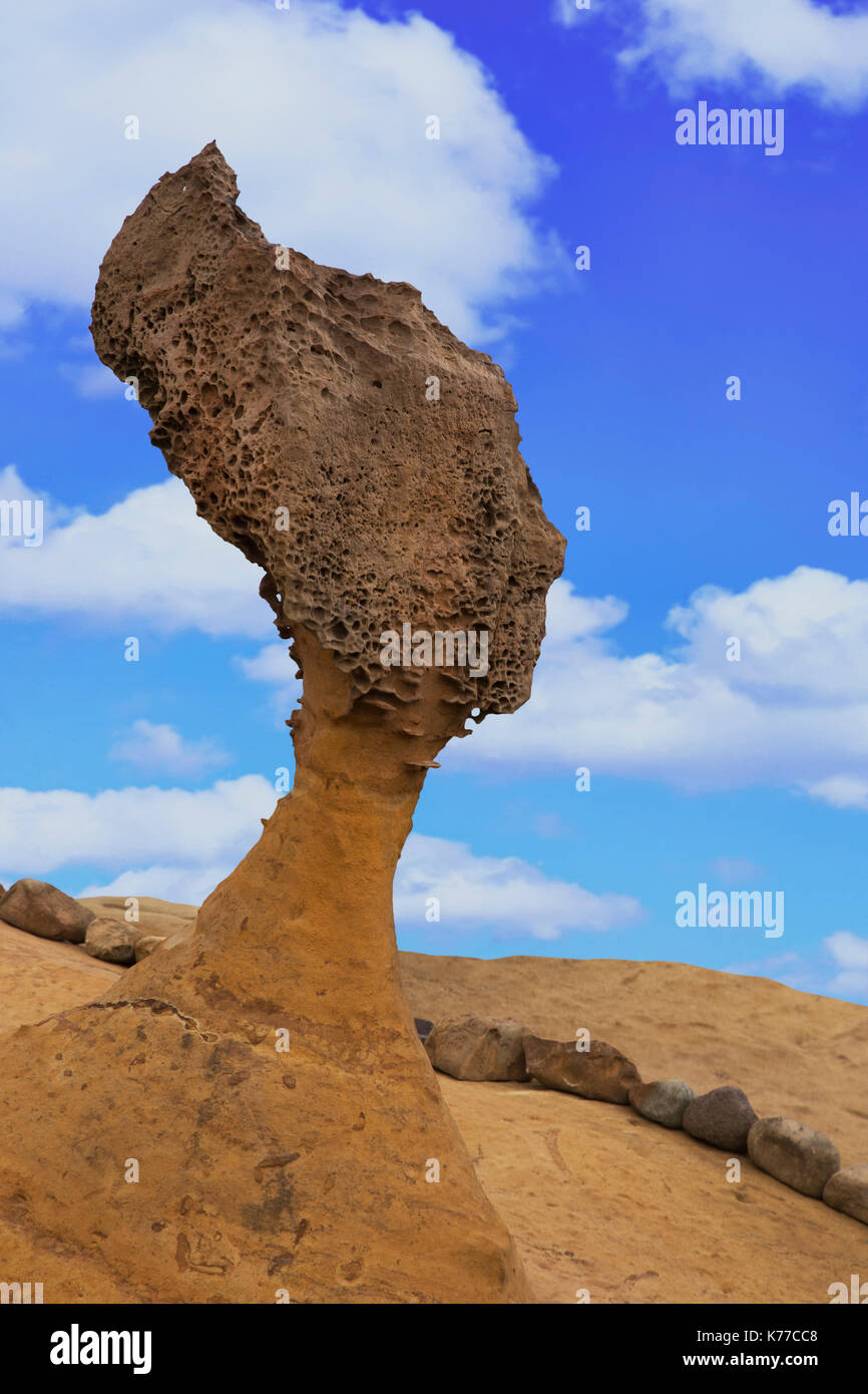 Queen's Head formation within the Yehliu Geological Park known to geologists as the Yehliu Promontory, this forms part of the Daliao Miocene Formation - Stock Image