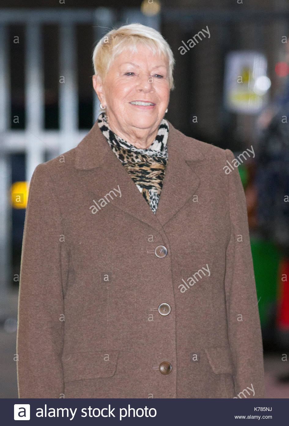 Laila Morse nudes (63 foto and video), Pussy, Paparazzi, Boobs, panties 2015
