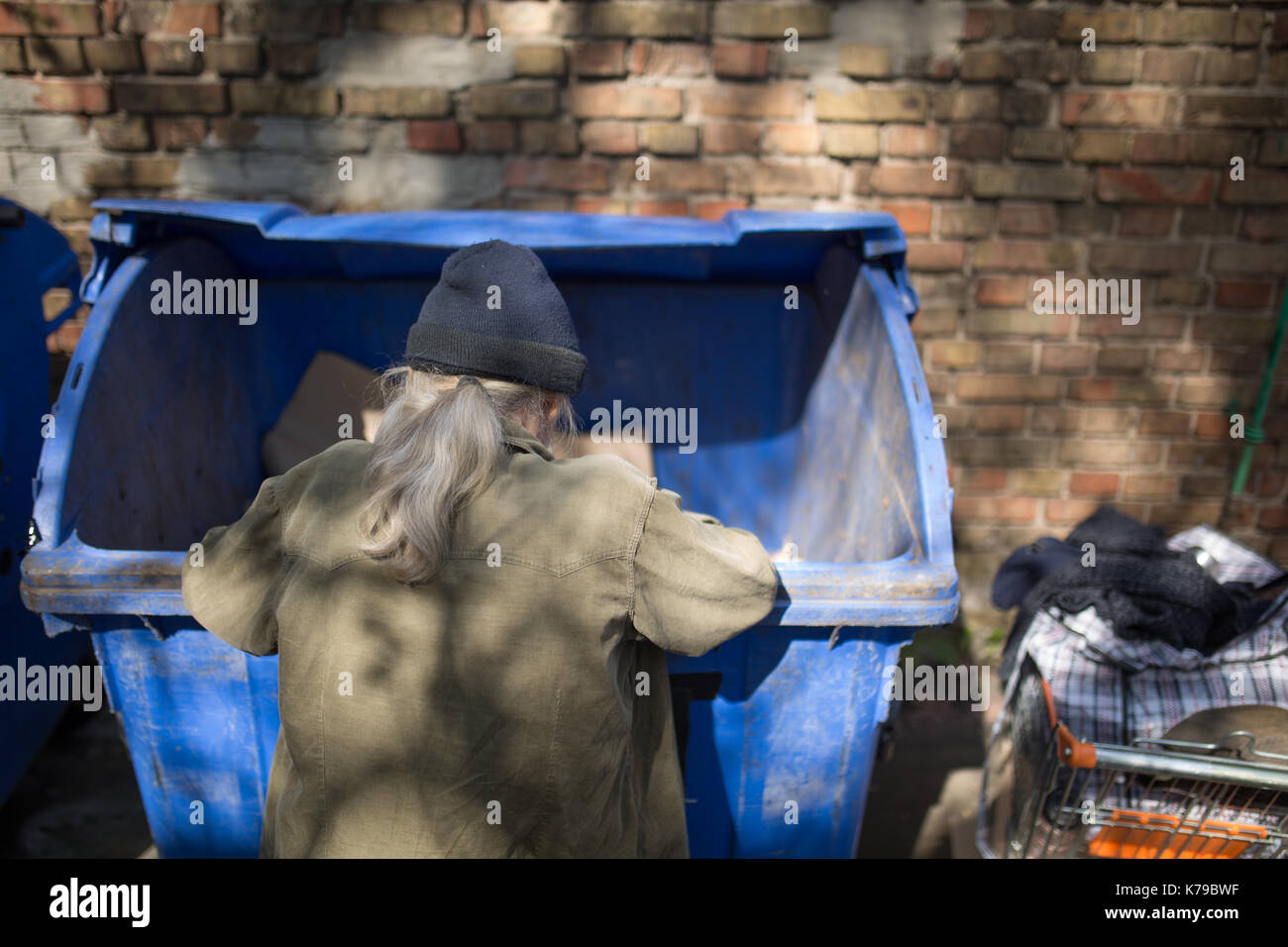 Homeless old man digging in trash can Stock Photo   Alamy