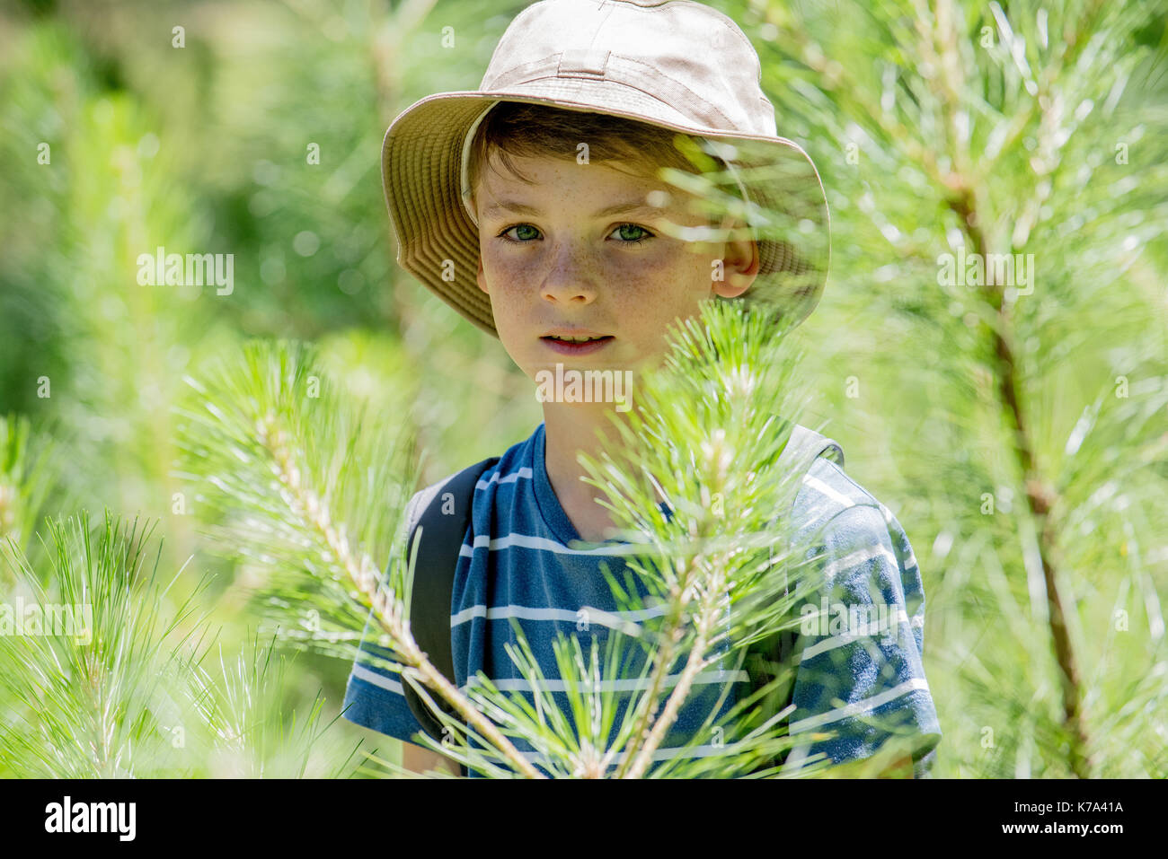 Boy in woods, portrait - Stock Image