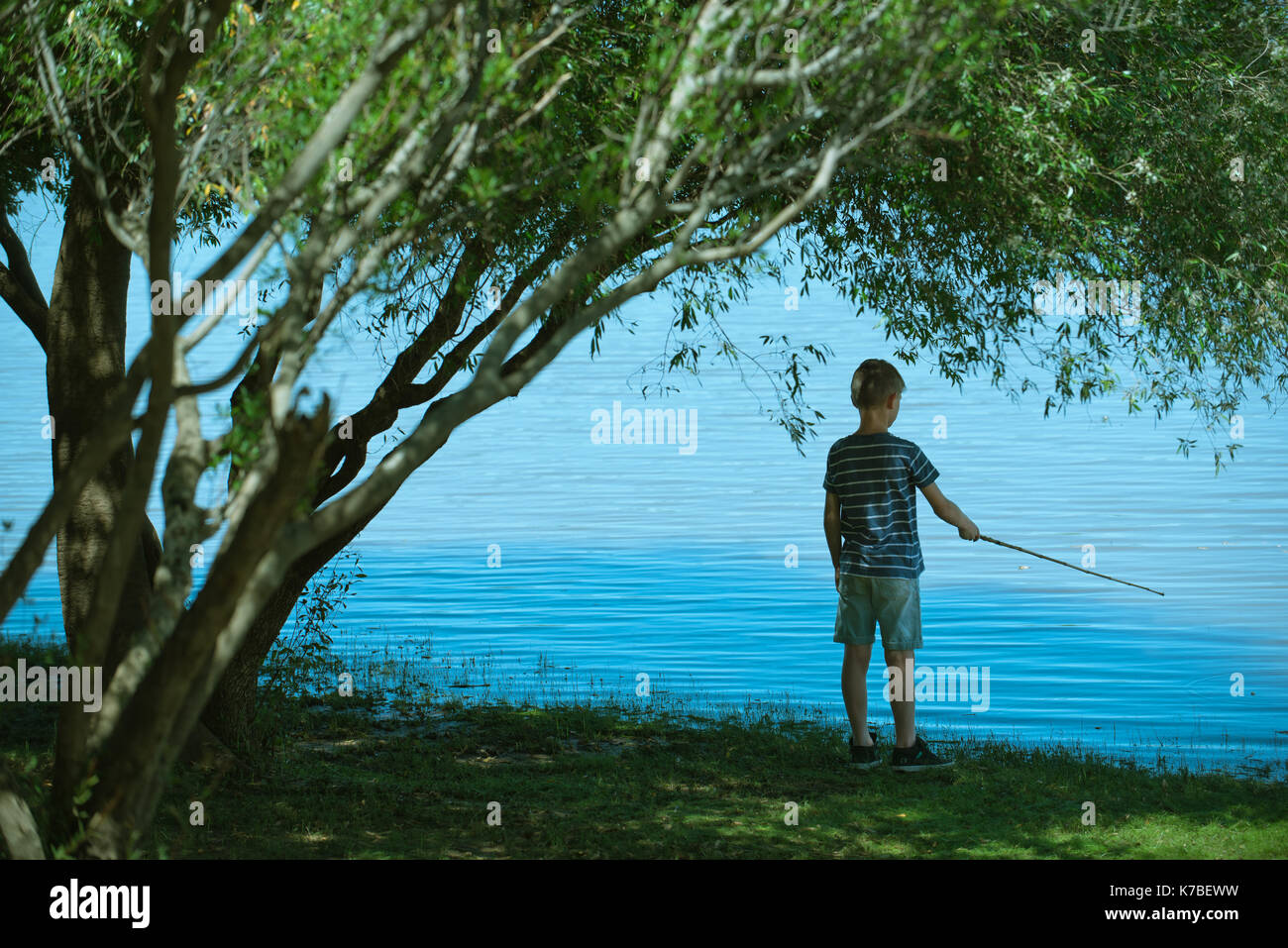 Boy fishing, rear view - Stock Image