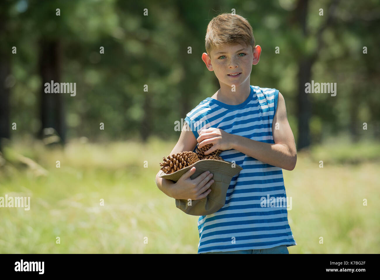 Boy carrying pinecones, portrait Stock Photo