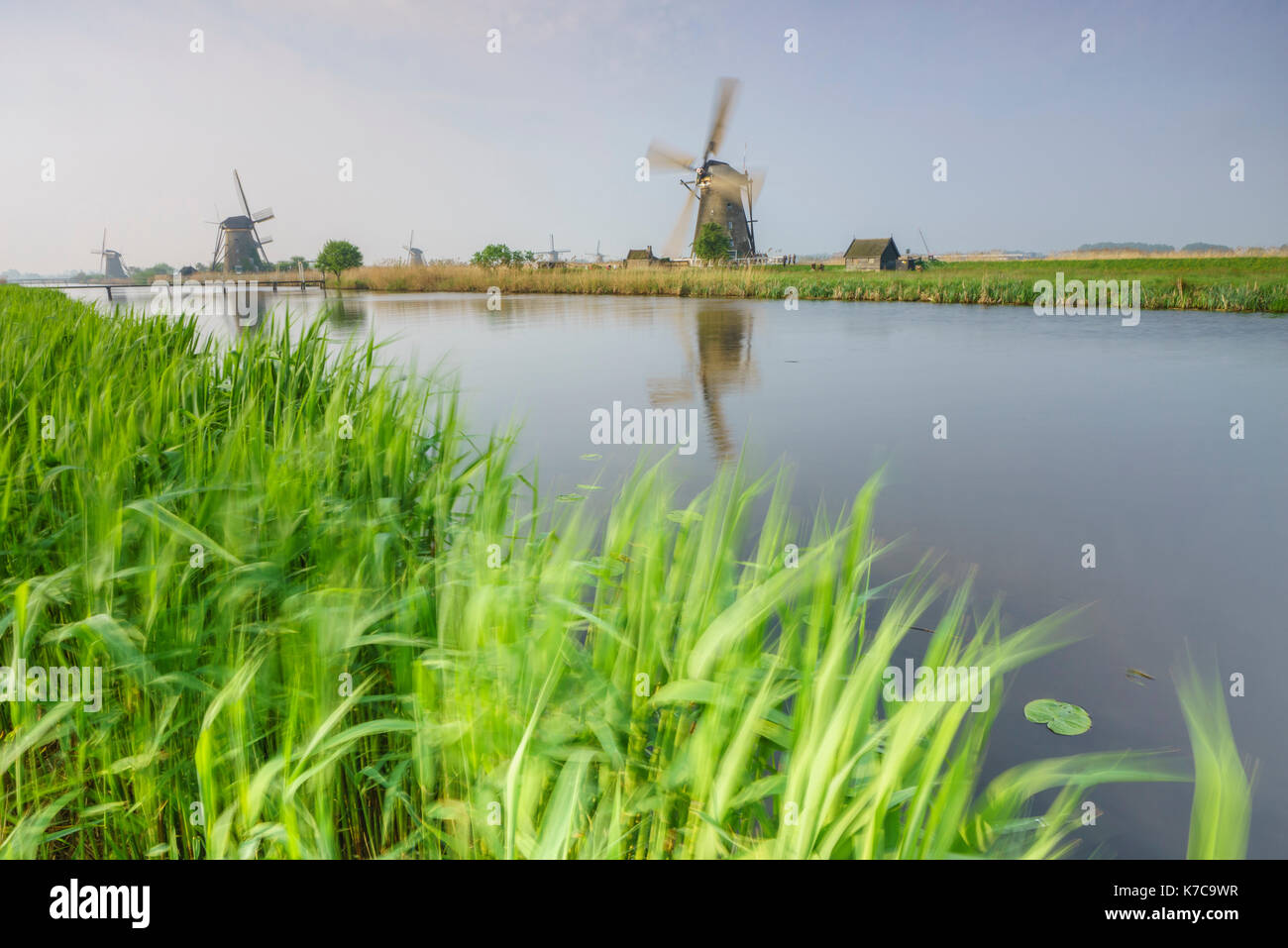 Green grass frames the windmills reflected in the canal Kinderdijk Rotterdam South Holland Netherlands Europe Stock Photo