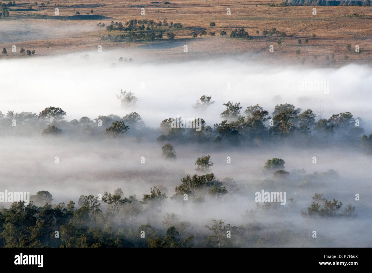 Low early morning cloud covers the ground in outback Australia and makes it seem less harsh. - Stock Image