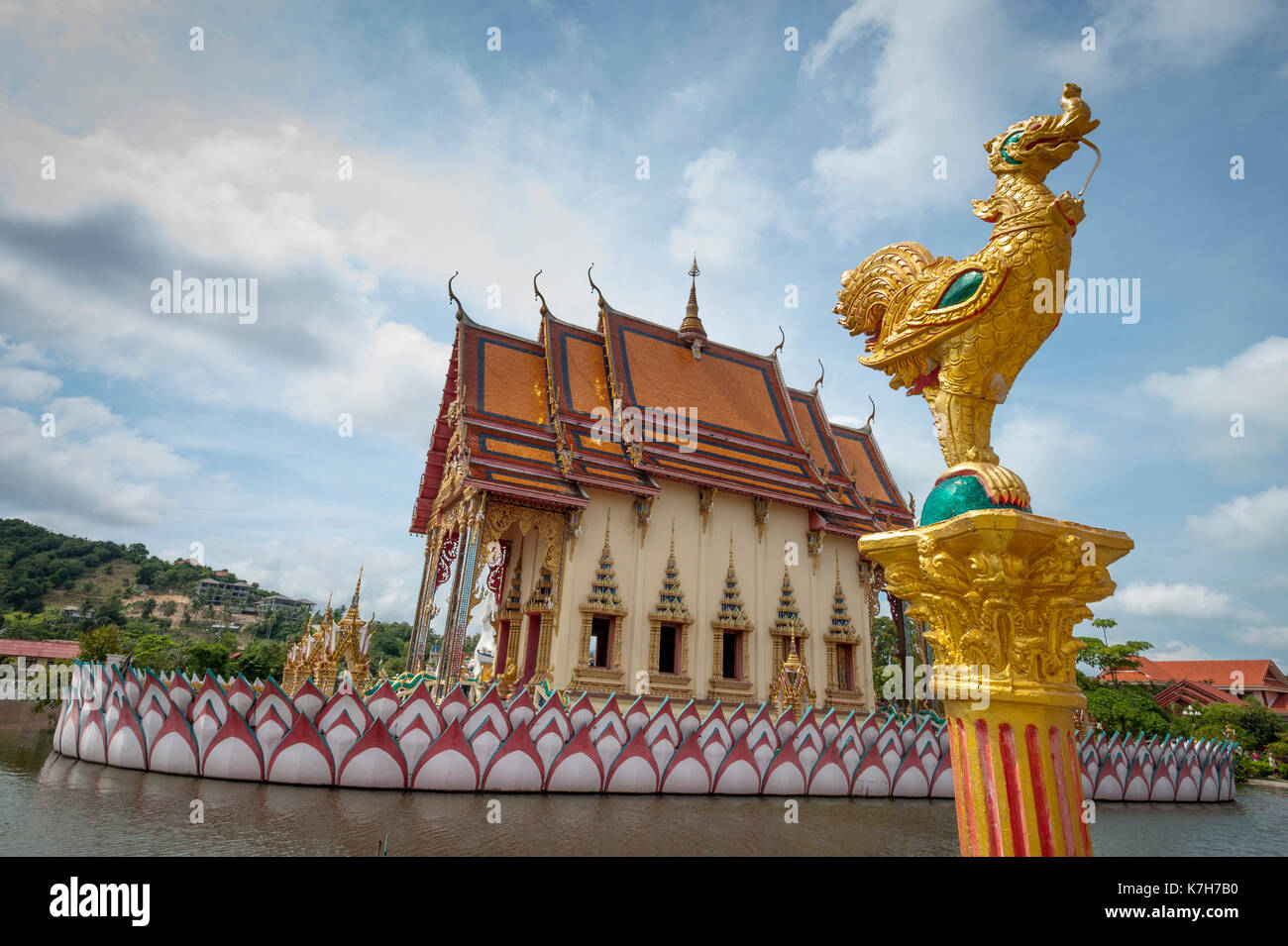 Cat sleeps on the tiles at Wat Plai Leam, a Buddhist temple on the island of Ko Samui, Thailand. - Stock Image