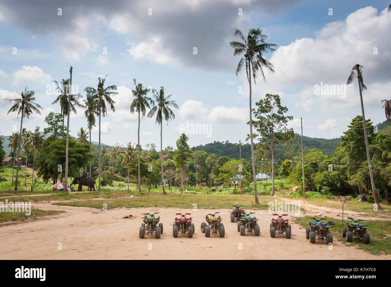 Quad bikes parked in a line with an elephant wandering in the background, Koh Samui, Thailand. - Stock Image