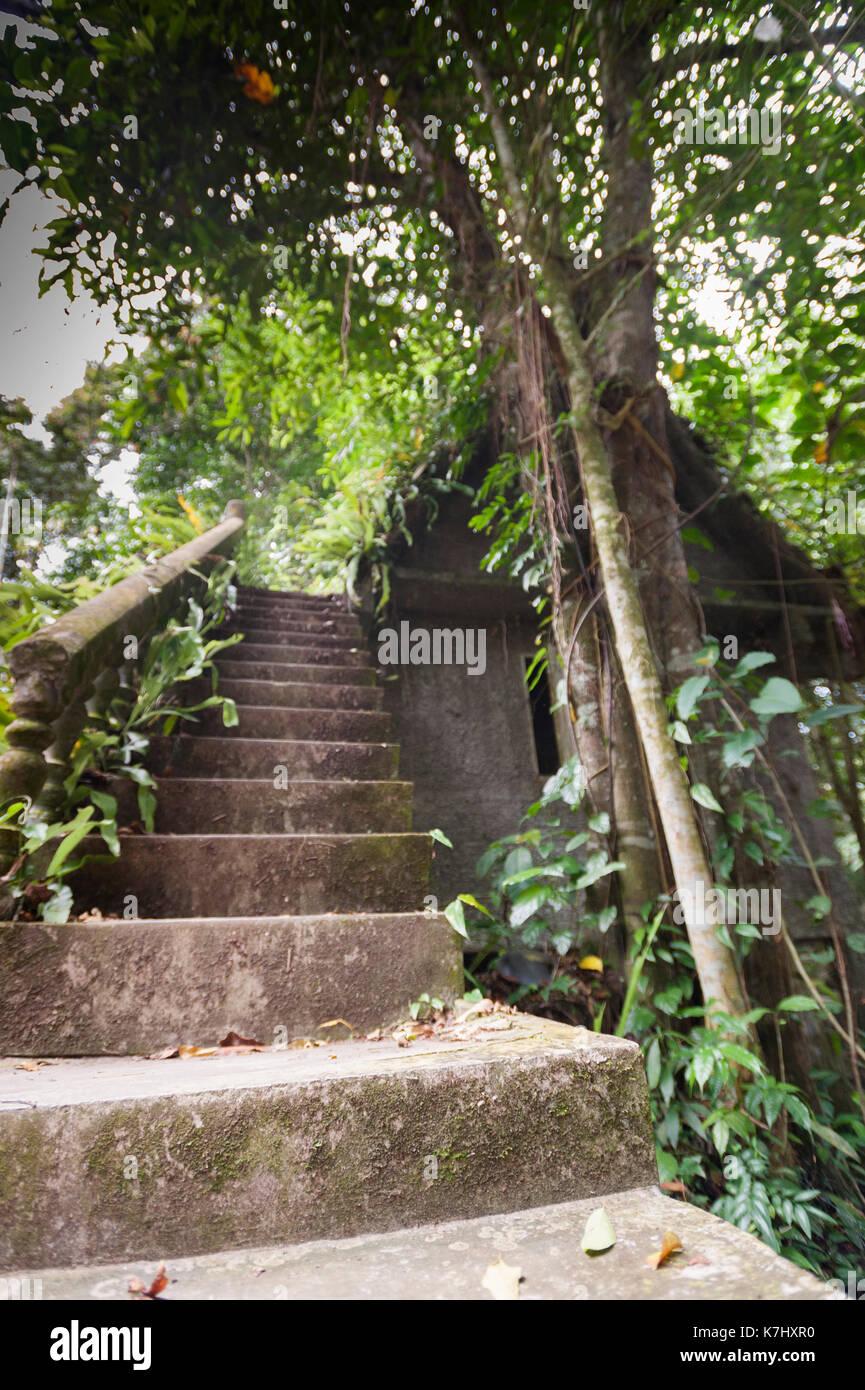 Starcase At The Secret Buddha Garden, Koh Samui, Thailand   Stock Image