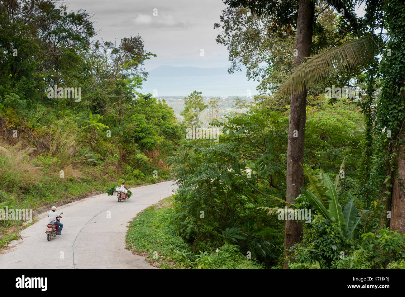 Motorbikes travel along a road on the island of Koh Samui, Thailand. - Stock Image
