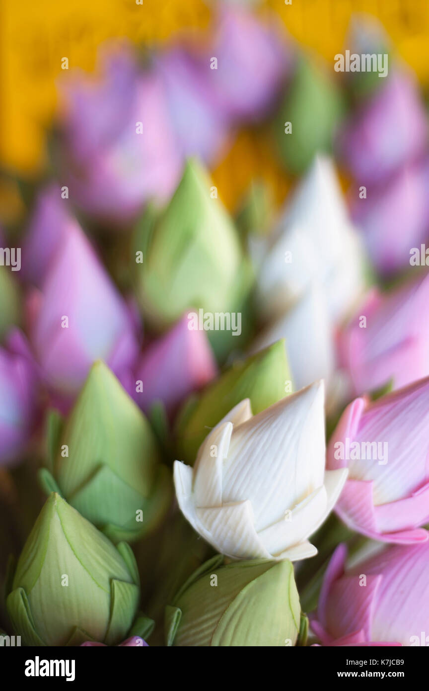 Paper lotus flowers stock photos paper lotus flowers stock images paper lotus flowers at wat chedi luang temple in chiang mai thailand stock image mightylinksfo