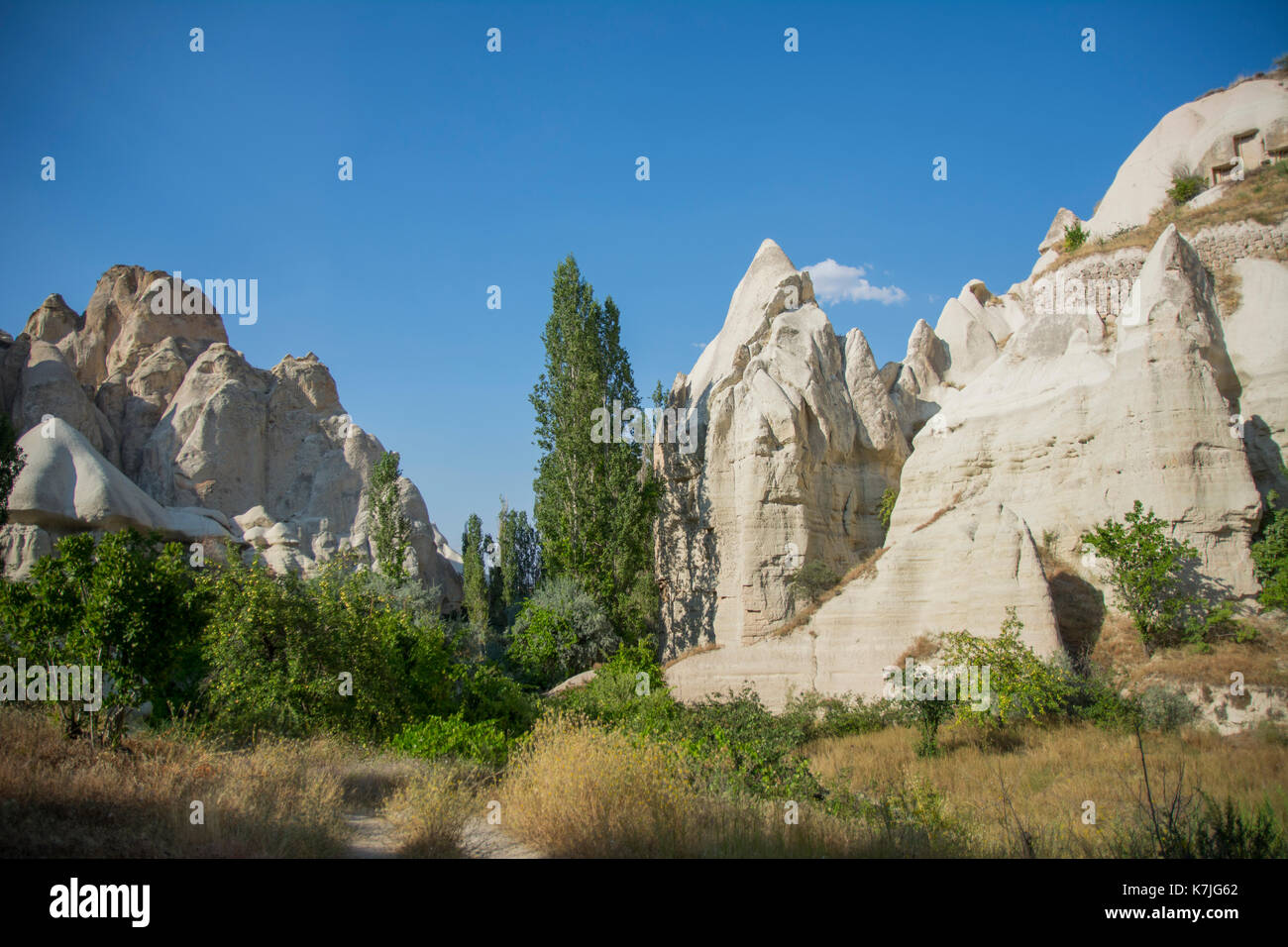Sandrock chimeny and trees in Capadocia national reserve in central Turkey. Patrimony of the Humanity (UNESCO) from Stock Photo
