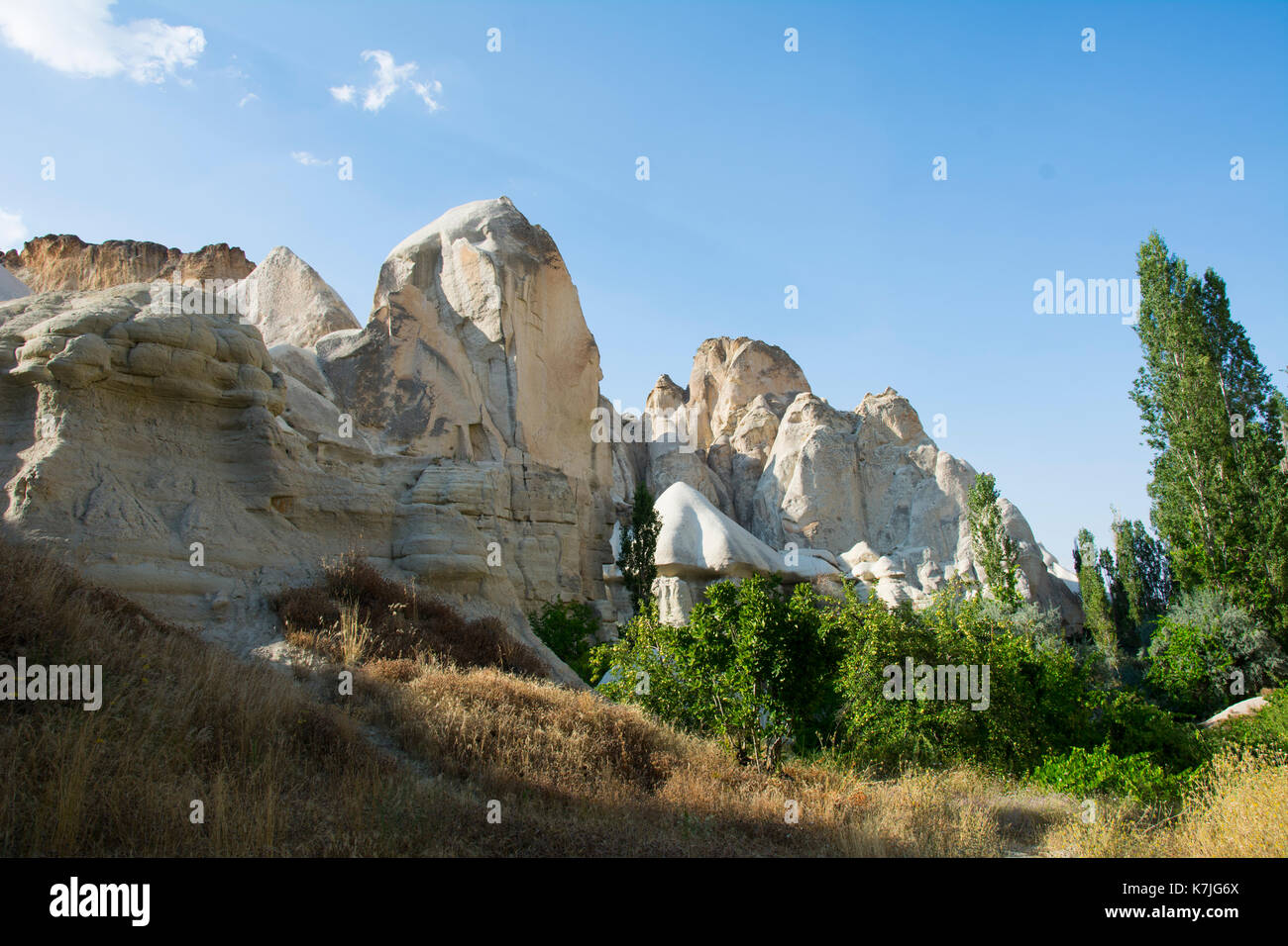 Sandrock chimeny and trees in Capadocia national reserve in central Turkey. Patrimony of the Humanity (UNESCO) from 1985 - Stock Image