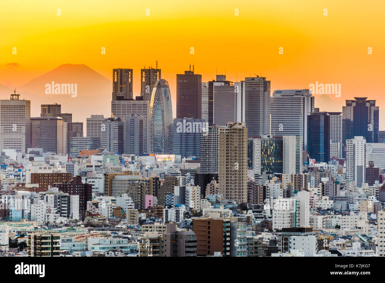 Tokyo, Japan cityscape with Fuji. - Stock Image