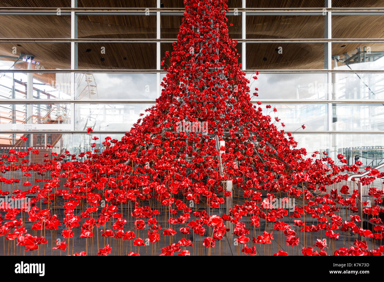 Cardiff, Wales, United Kingdom - September 15, 2017: Weeping Window, a cascade of several thousand handmade Poppies pouring from a window of the Welsh - Stock Image