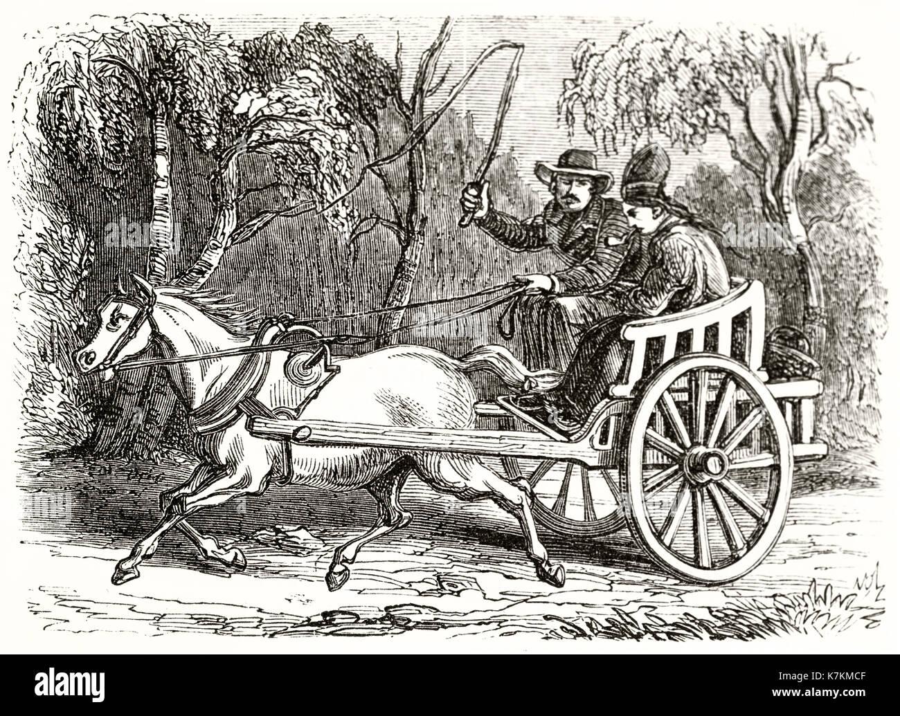 Old illustration of a lappish postilion on a cart. By unidentified author, publ. on Le Tour du Monde, Paris, 1862 - Stock Image