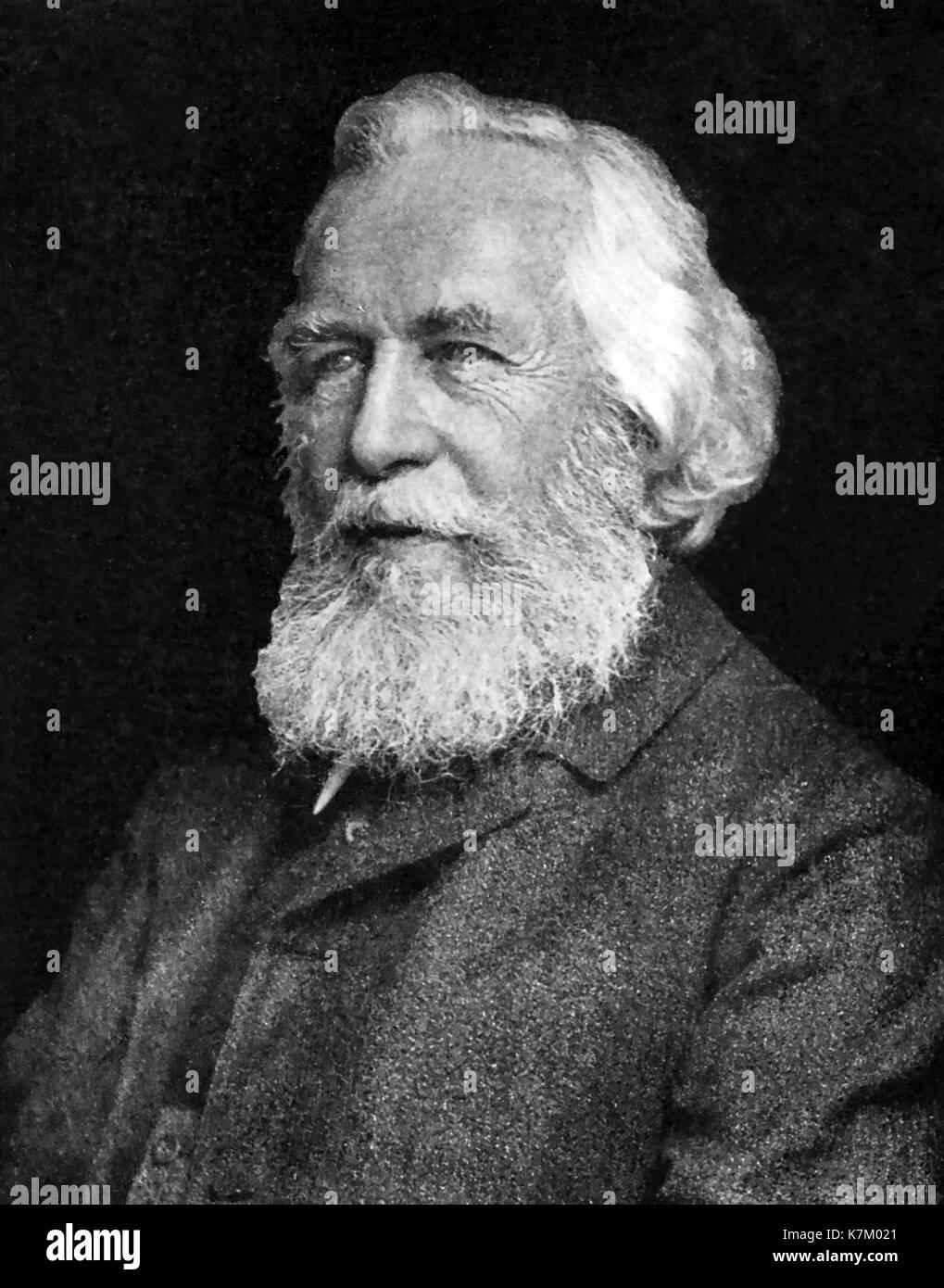 ERNST HAECKEL (1834-1919) German biologist, physician,naturalist - Stock Image
